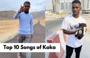 Top 10 Songs of Kaka